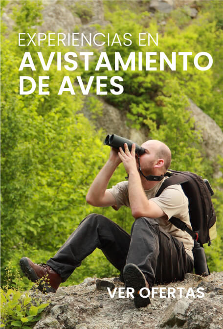 Promociones cortesyciaviajesyturismo.com